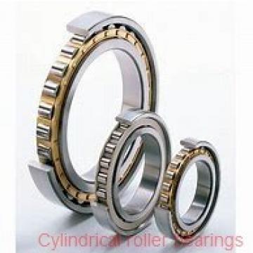 20 mm x 52 mm x 15 mm  20 mm x 52 mm x 15 mm  FBJ NUP304 cylindrical roller bearings