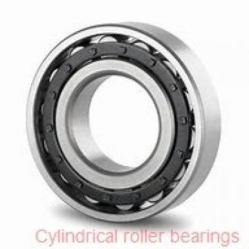 30 mm x 72 mm x 19 mm  30 mm x 72 mm x 19 mm  NACHI NUP 306 cylindrical roller bearings