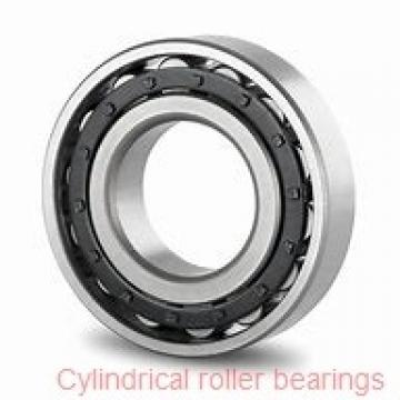 75 mm x 130 mm x 31 mm  75 mm x 130 mm x 31 mm  NKE NCF2215-V cylindrical roller bearings